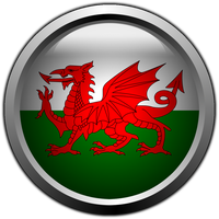Welsh flag glass Button by stumpy666davies