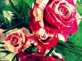 ...to Mother's Day with love by 86Botond