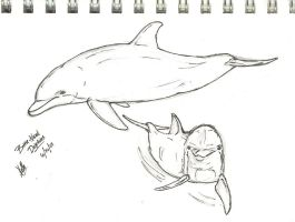 Dolphins - Sketch by autumnalangel