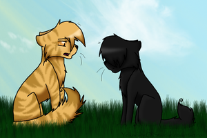 I Greet You as My Leader by YellowfangOfStarclan