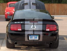 2007 Shelby GT500 rear by Qphacs
