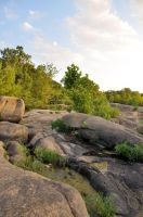 James River Park 17 by DandyStock