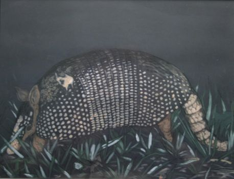 Armadillo by NathanLParker