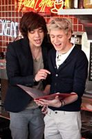 Harry and Niall by convict123
