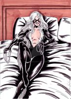 Black Cat 9-10 Color by hdub7