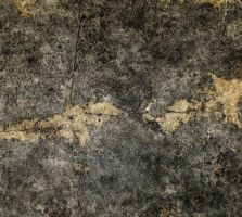 Texture 89 by Voyager168