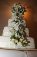 Grand cake by in-my-viewfinder