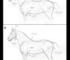 Tutorial - How To Draw Horses by Hazel-rah