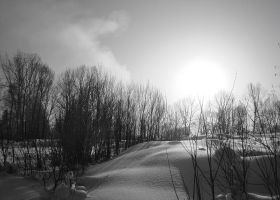 Black-and-white by An-gora