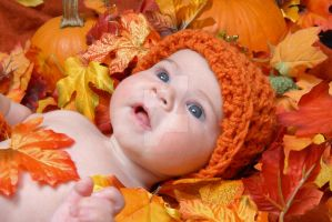 Pretty Pumpkin by GMCPhotography