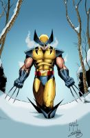 Wolverine on the snow by SWAVE18