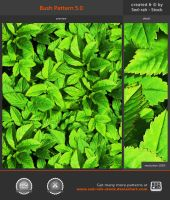 Bush Pattern 5.0 by Sed-rah-Stock