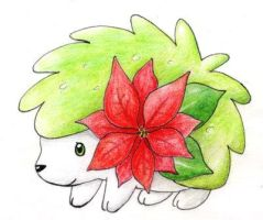 Christmas Shaymin by Tyltalis