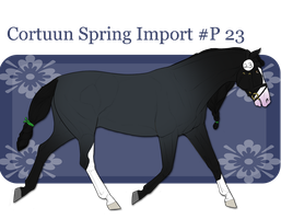 Spring Import P23 by BV-Academy
