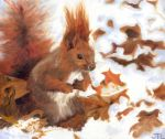 Snowy Squirrel by blossomcrown