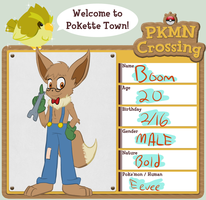 PKMN Crossing - Boom by Bread-Crumbz