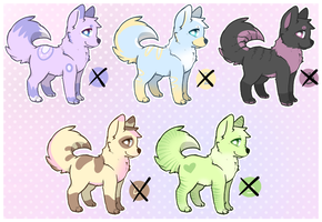Dog Adopts 1 [CLOSED] by moxyo