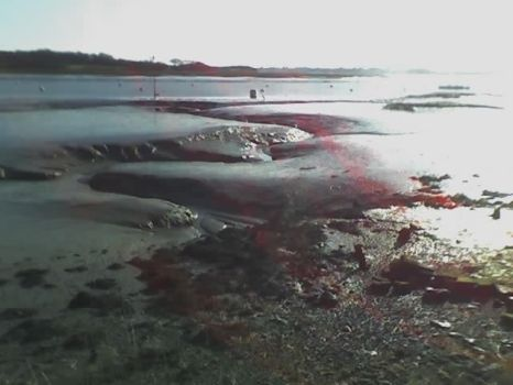 the mudflats of bosham hoe by 9pins