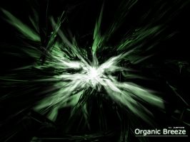 Organic Breeze by Overtone