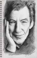 Sir Ian Mckellen by duyeqing