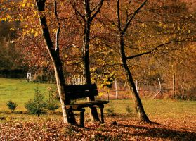 Have an autumn seat by Lucy-art