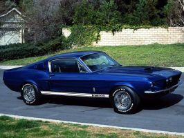 gt 500 by puddlz
