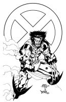 Wolverine Inks by DontBornInInk
