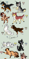 Cheap Cat and Dog Adoptables CLOSED by TheFoxFeatherz