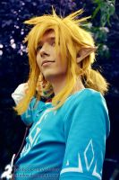 Link - Keep Up (Cosplay from Zelda Wii U) by Echolox