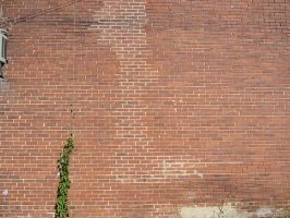 Brick wall by dull-stock