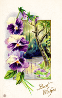 Best Wishes vintage postcard by SolStock
