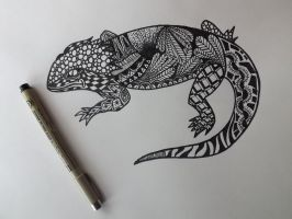 Bearded Dragon by frustrated62
