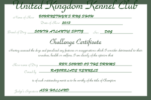 RBK Sound of the Drums - Challenge Certificate #3 by TheChiefofTime