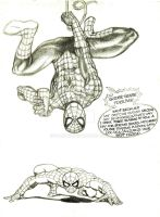 Spider man. by inarion7