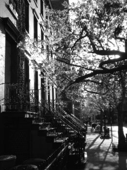 NYC_Light through by Syna1