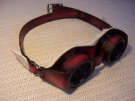 Angel Wing Goggles by Altitude-Artisan
