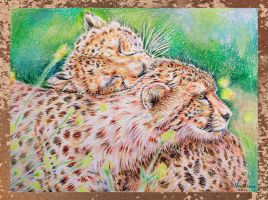 Cheetah Love by Venlian
