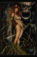 Witchblade by Michael Bair by pixeltease