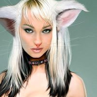 Neko - The catwoman- detail by fantasio