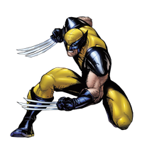 Wolverine by JayC79