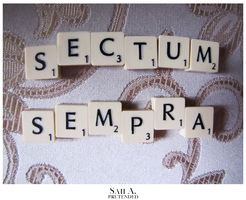 SECTUMSEMPRA by Pretended