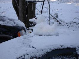 Snow Duck by Lucora