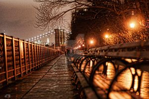 Brooklyn Promenade at night by carlosthomas