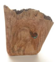Burl Bowl Finished Top by lamorth-the-seeker