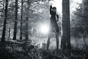 Leading You Through The Woods I by ChrisK-photo