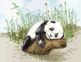 Panda needs a hug by tomographiser