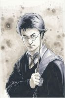 Harry Potter commission by DylanTeague