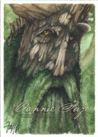 Treebeard by ConnieFaye