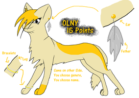 QUICK 15P ADOPTABLE by Arkare