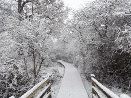 Pathway leading to nowhere but white by JordanAlice